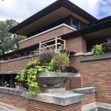 plaster conservation at Frank Lloyd Wright landmark